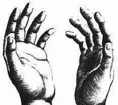 mains 2
