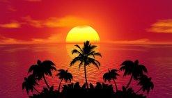 tropical-1651426__340
