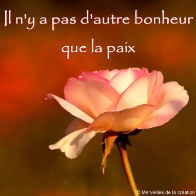 bonheur_015